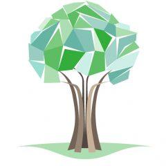 Matthew Clements Tree Service